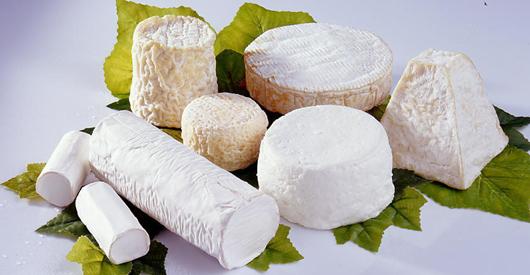 Ферма – сырница Бодрас, поставщик Елисеевского дворца