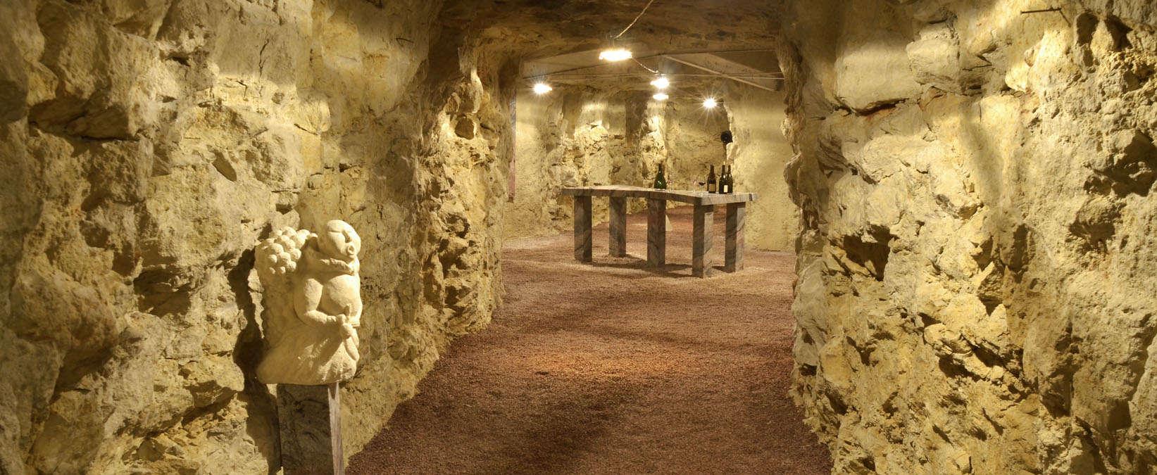 Винная дегустация и посещение винных погребов долины реки Луара