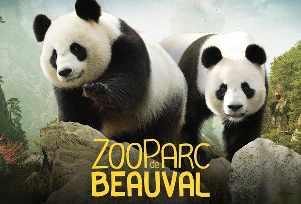Зоопарк Beauval